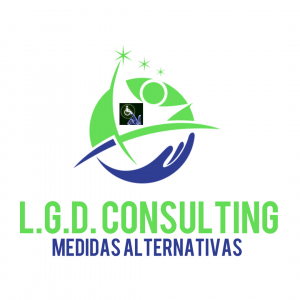 L.G.D. CONSULTING